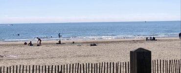 Opération de nettoyage des plages à Carnon