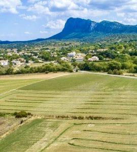 Venez prendre l'air ce week-end à Saint-Clément-de-rivière !
