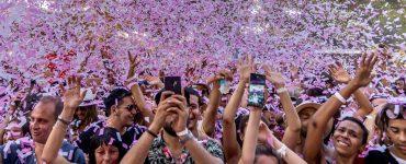 Montpellier : Family Piknik part en live stream