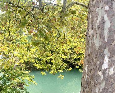 Montpellier : pluvieux mais encore bien doux