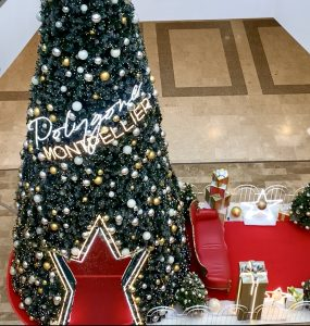 Montpellier : un grand sapin de Noël au Polygone