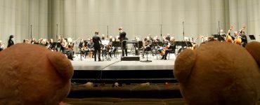 Montpellier : des peluches à l'Opéra à la place du public