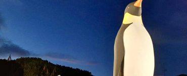 Un pingouin géant à La Grande-Motte