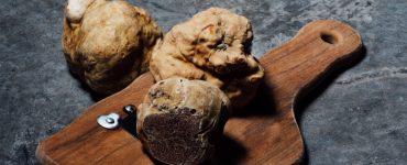 Saint-Guilhem-le-Désert fête la truffe