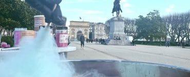 Montpellier : la barbe à papa s'invite aux Dimanches du Peyrou