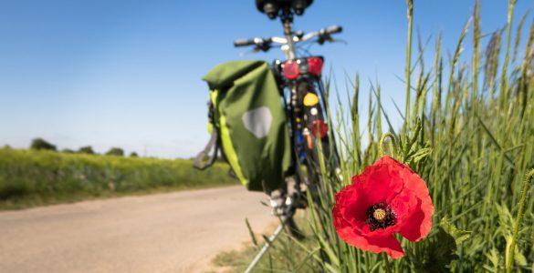 « Mai à vélo » participez au grand jeu de piste
