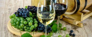 Participez aux pique-niques des vignerons indépendants