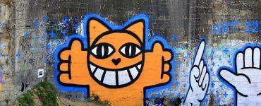 Zénith Sud: M. Chat sera le parrain du salon Solid'Art!